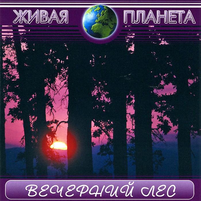 Zakazat.ru Живая планета. Вечерний лес