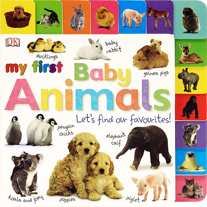 My First Baby Animals: Let's Find our Favourites! my first animals