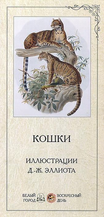 Кошки. Т. Жукова