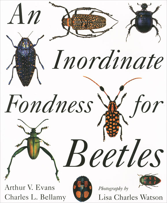 An Inordinate Fondness for Beetles anatomy of a disappearance