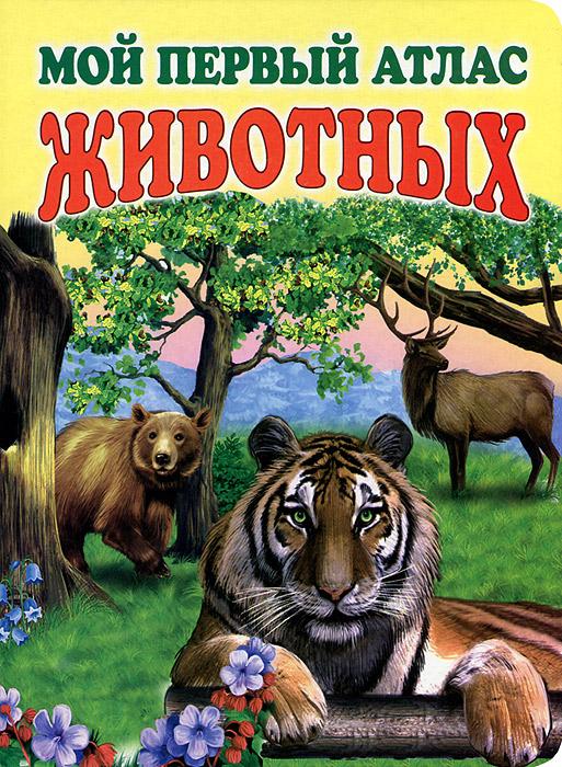 Мой первый атлас животных давид п мой первый атлас мира isbn 9785389090071