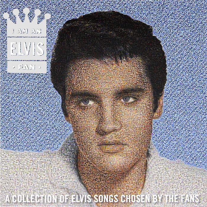 Элвис Пресли Elvis Presley. I Am An Elvis Fan free shipping q5669 60664 for hp designjet t610 t1100 z2100 z3100 z3200 vacuum fan aerosol fan assembly original used