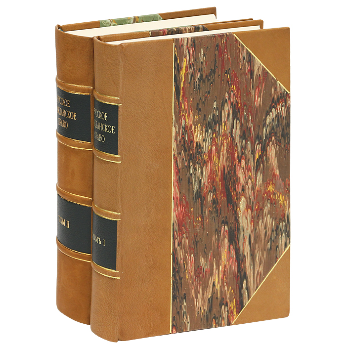 Русское гражданское право (комплект из 2 книг). Д. И. Мейер