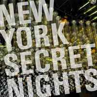 New York Secret Nights modern luxury brand new 100
