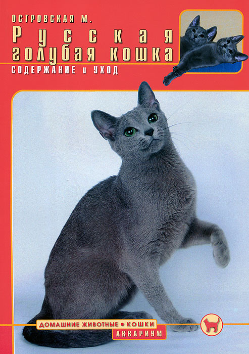 М. Островская Русская голубая кошка. Содержание и уход