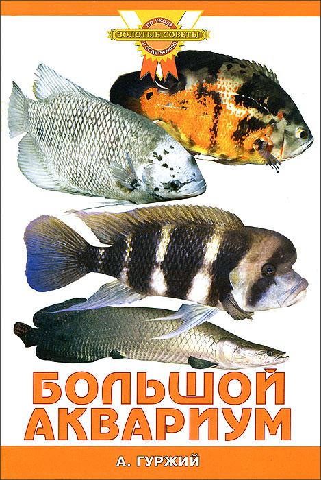 А. Гуржий Большой аквариум