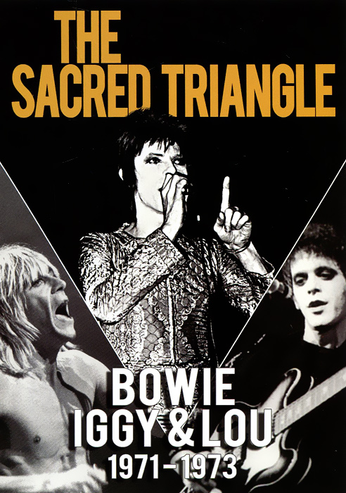 David Bowie, Iggy Pop & Lou Reed: The Sacred Triangle 1971 - 1973 malcolm kemp extreme events robust portfolio construction in the presence of fat tails isbn 9780470976791