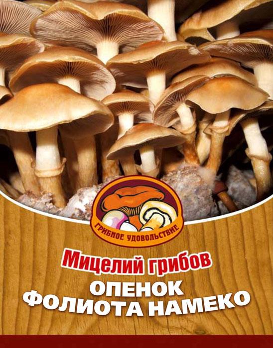 Мицелий грибов Опенок Фолиота Намеко, на 16 древесных палочках10039Опенок Фолиота Намеко - японский вариант рыжиков или опят. У этого гриба прекрасный вкус и текстура. По мнению японцев, главное достоинство этих грибов заключается именно в их мягкости и скользкости. Это ощущение, может быть, с точки зрения европейца и экзотично, но оно стоит того, чтобы его испытать. Благодаря мицелию грибов Фолиота Намеко теперь вы без труда сможете вырастить любимые грибы у себя в саду или дома. И уже через 3-5 месяцев после посадки у вас появится первый урожай грибов. За один год можно собрать от 3 до 6 кг с каждого бревна. Для того чтобы вырастить грибы вам понадобится: мицелий Опенок Фолиота Намеко, бревно или палка лиственных пород (бук, тополь, береза, ива, клен, рябина и плодовые деревья) без признаков гнили. Благоприятное время для посадки мицелия Опенок Фолиота Намеко - в природных условиях с апреля по октябрь, в помещении - круглый год.Плодоносят мицелии волнами, до 3-4 лет на мягкой древесине, 5-7 лет на твердой. Характеристики:Материал:древесная палочка. Размер упаковки:11 см х 15,5 см х 1 см. Артикул:10039.