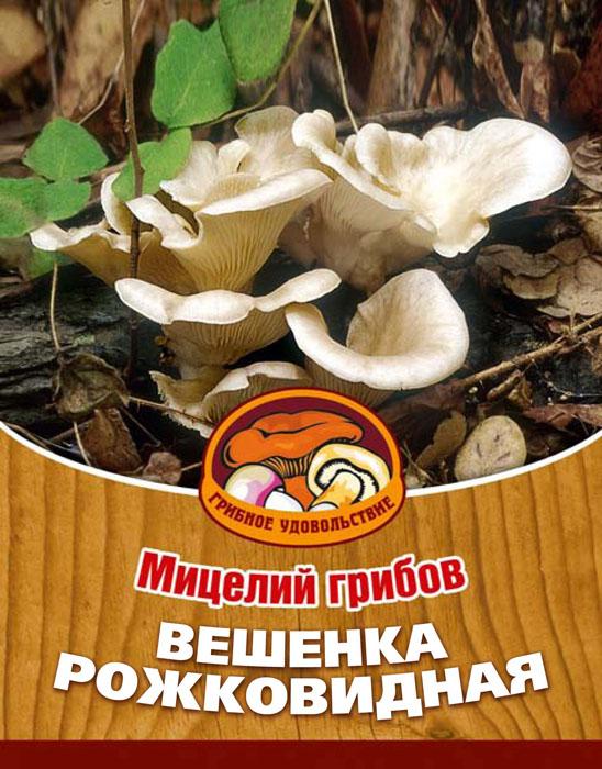 Мицелий грибов Вешенка рожковидная, на 16 древесных палочках10036Вешенка рожковидная - очень красивый гриб. Его характерная особенность состоит в сходстве плодового тела с пастушьим рожком, в связи с чем и дано такое название. Мякоть толстая, плотная, белая, с приятным вкусом и запахом. Благодаря мицелию грибов Вешенка рожковидная теперь вы без труда сможете вырастить любимые грибы у себя в саду или дома. И уже через 3-6 месяцев после посадки у вас появится первый урожай грибов. За один год можно собрать от 3 до 6 кг с каждого бревна. Для того чтобы вырастить грибы вам понадобится: мицелий Вешенка рожковидная, бревно или палка лиственных пород (бук, тополь, береза, ива, клен, рябина и плодовые деревья) без признаков гнили. Плодоносят мицелии волнами, до 3-4 лет на мягкой древесине (тополь, береза, ива), 5-7 лет на твердой (бук, клен, рябина). Характеристики:Материал:древесная палочка. Размер упаковки:11 см х 15,5 см х 1 см. Артикул:10036.