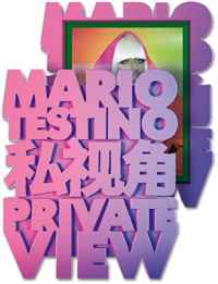 Mario Testino: Private View (Limited Edition) a private view