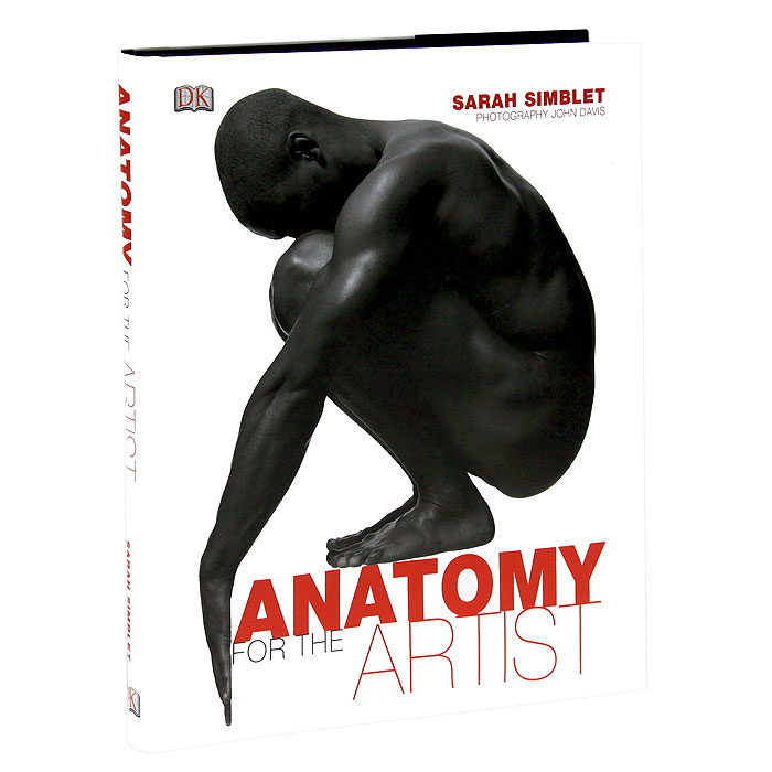 Anatomy for the Artist cmam skeleton08 170cm human skeleton model w ligament muscle anatomy medical science educational teaching anatomical models