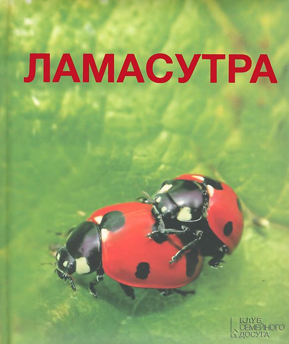 Елена Лесовикова Ламасутра мигель де каррион честные нечистые читать