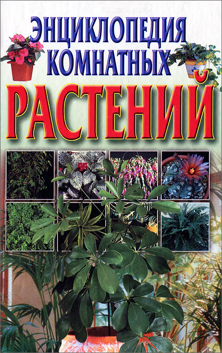 Энциклопедия комнатных растений рычкова ю новейшая энциклопедия комнатных растений
