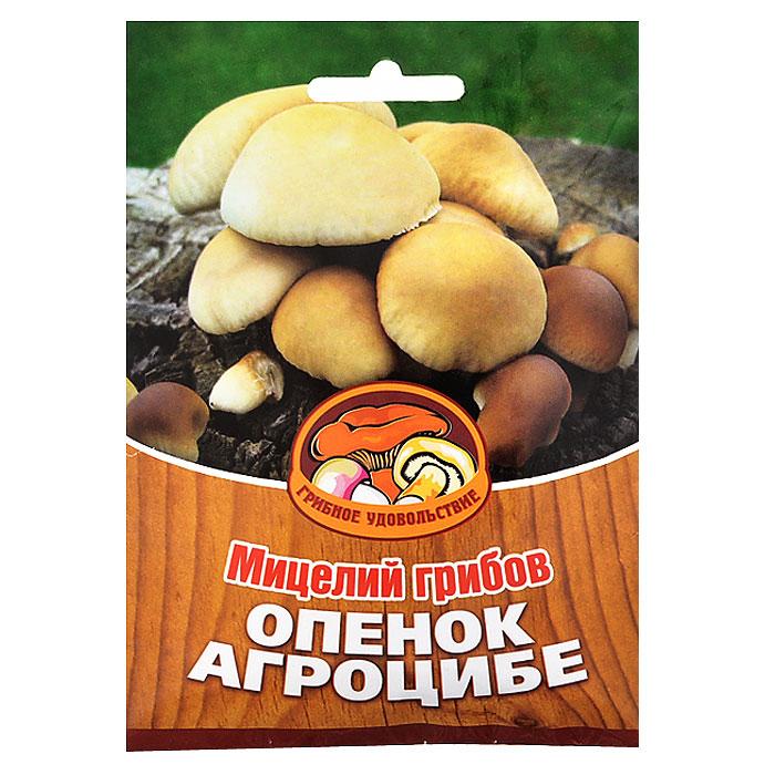 Мицелий грибов Опенок Агроцибе, на 16 древесных палочках мицелий грибов вешенка рожковидная на 16 древесных палочках