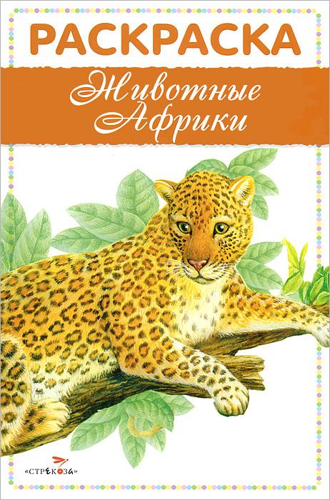 Животные Африки . Раскраска