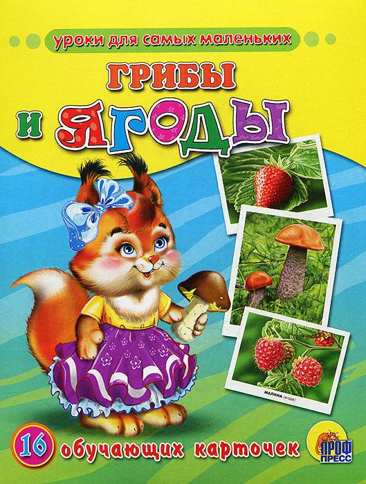 Грибы и ягоды. 16 обучающих карточек рыжий кот обучающие карточки грибы и ягоды