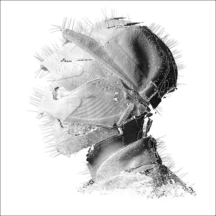 Woodkid Woodkid. The Golden Age (2 LP) iclebo pop