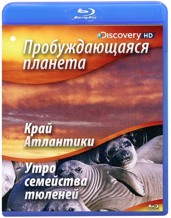 Discovery: Пробуждающаяся планета: Край Атлантики / Утро семейства тюленей (Blu-ray) лазарева и лось в облаке