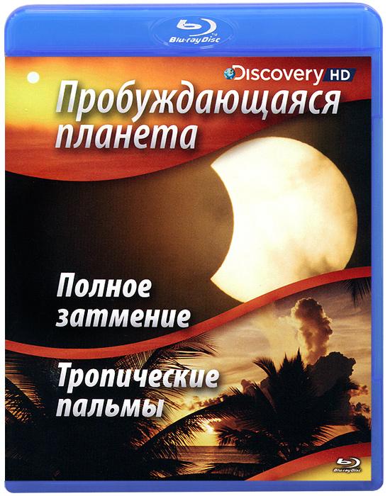 Восход - то природный будильник для гор, лесов, морей и миллионов созданий, живущих наЗемле. Насладитесь безмятежными и одновременно захватывающими путешествиями по нашей планете во время восхода солнца, послушайте песни, которые поет нам просыпающаяся природа. Полное затмениеВ этой программе вы станете свидетелями утра 29 марта 2006 года, когда произошло полное солнечное затмение, начавшееся в местечке Натель в Бразилии, и закончившееся в Анталии, Турция. Тропические пальмыУстье реки Кристал (Флорида, США) считается одной из богатейших дельт в мире, и десять тысяч лет назад здесь располагались колонии древних людей. На протяжении тысяч лет люди занимались рыбной ловлей. Раковины от устриц, которые они выбрасывали, образовали целый остров, с которого мы сейчас можем наблюдать за восходом солнца и пробуждением местных обитателей. Пальмы обрамляют устье реки и белый пляж. Ранние рыбаки держат свой курс на Мексиканский залив. Так выглядит обычное утро в дельте реки Кристал.