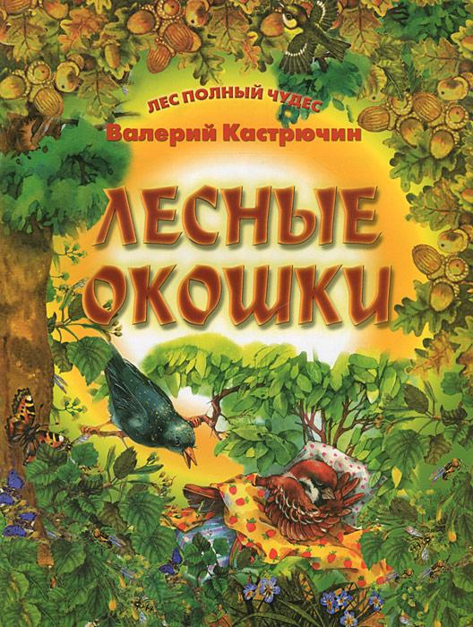 Валерий Кастрючин Лесные окошки валерий кастрючин сказки старой черепахи