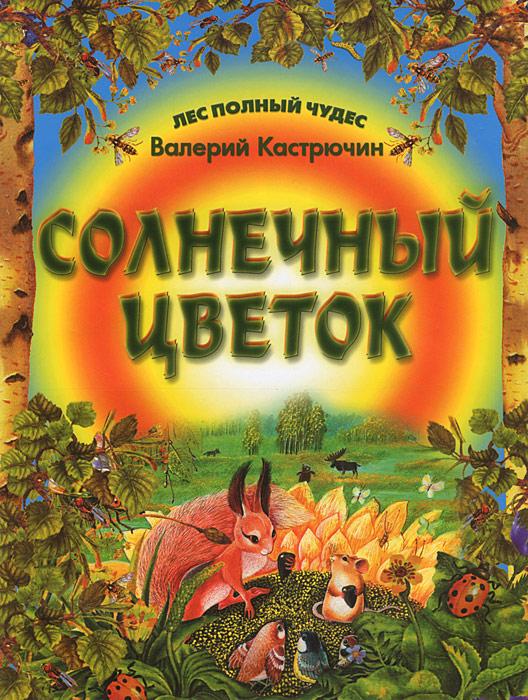 Валерий Кастрючин Солнечный цветок валерий кастрючин сказки старой черепахи