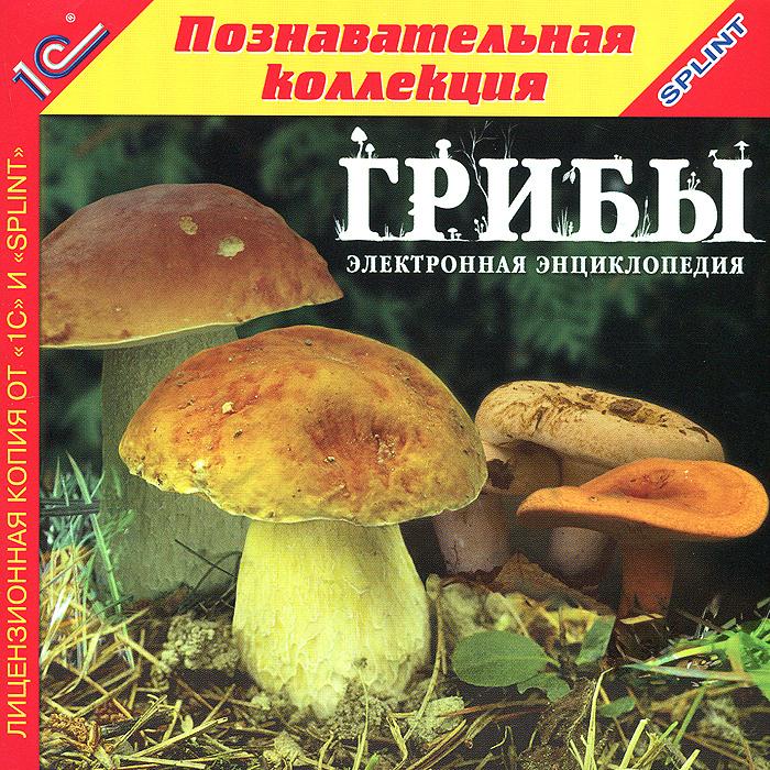 1С: Познавательная коллекция. Грибы галлюциногенные грибы где купить