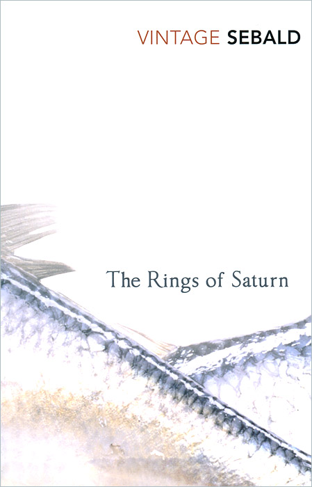 Rings Of Saturn pedro valadas monteiro enhancing the competitiveness of peripheral coastal regions