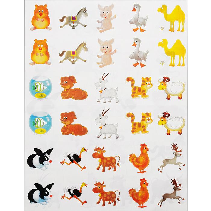 Картинки домашних животных на шкафчики