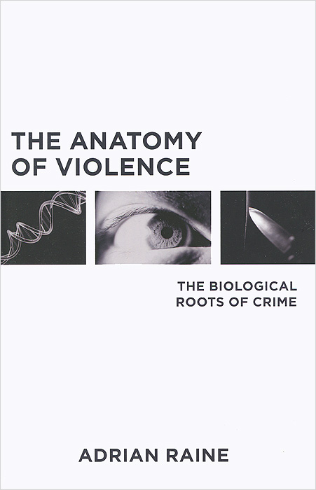 The Anatomy of Violence anatomy of a disappearance