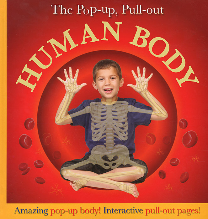 The Pop-Up, Pull-Out: Human Body