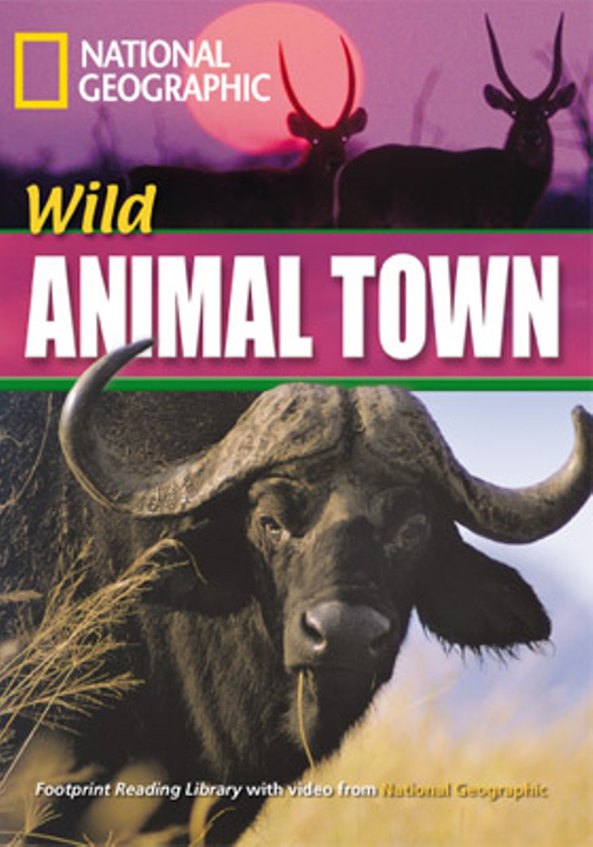 Footprint Reading Library 1600: Wild Animal Town seeing things as they are