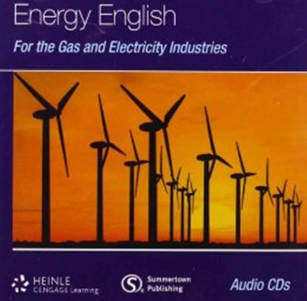 Energy English For Gas & Electricity Industries Audio CD(x1) english for the energy industries oil gas and petrochemicals teacher s book