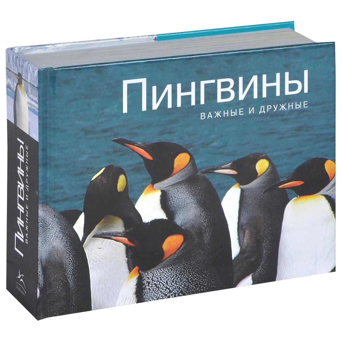 Zakazat.ru: Пингвины. Важные и дружные. Парселл Л.
