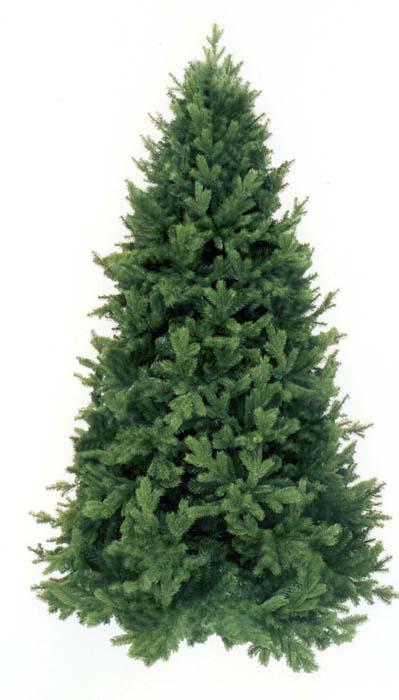 "Ель Триумф ""Царская"", цвет: зеленый, высота 230 см, Triumph Tree"