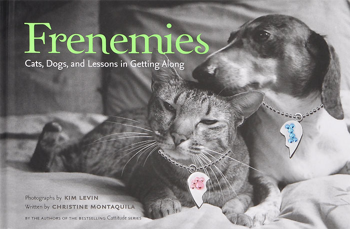 Frenemies: Cats, Dogs, and Lessons in Getting Along foolish lessons in life and love