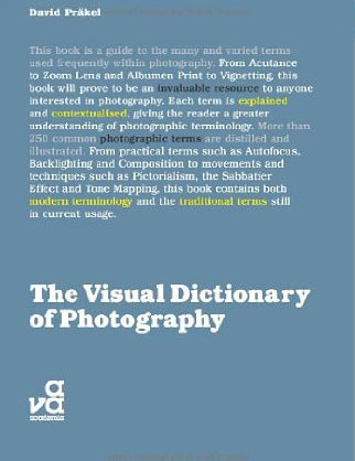 The Visual Dictionary of Photography the princeton dictionary of buddhism