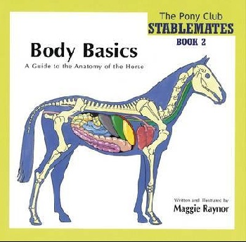 Body Basics - a Guide to the Anatomy of the Horse naked basics