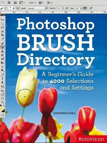PhotoShop Brush Directory: A Beginners Guide to 4,000 Selections and Settings working guide to reservoir exploration and appraisal