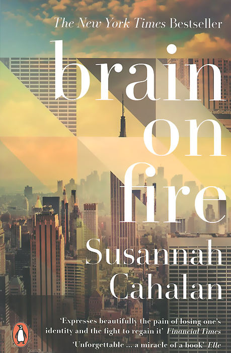 Brain on Fire: My Month of Madness brave new brain