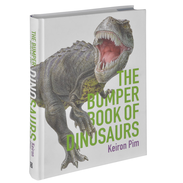 The Bumper Book of Dinosaurs harry and the dinosaurs have a happy birthday