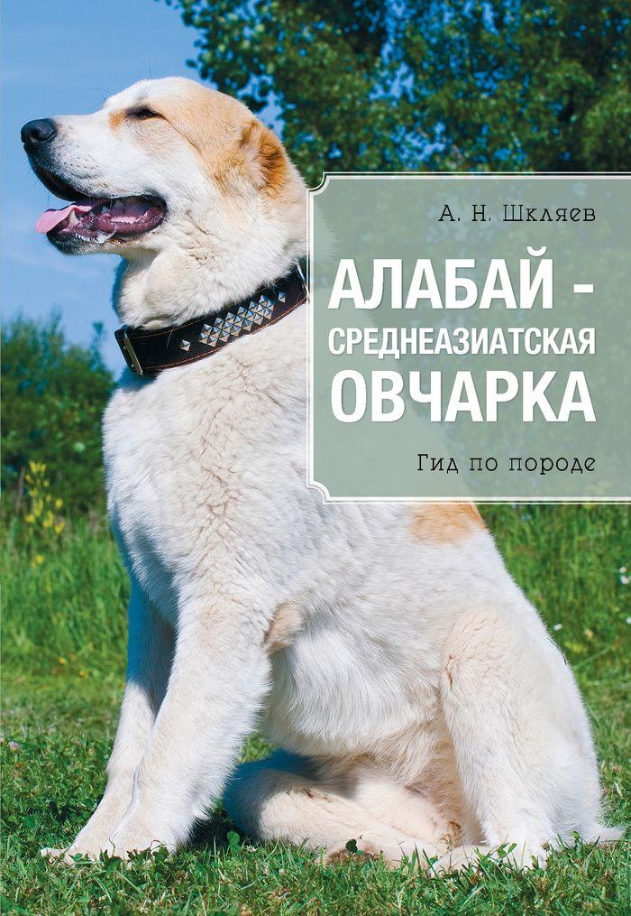 Шкляев Андрей Николаевич Алабай - среднеазиатская овчарка купить конверсы в минске