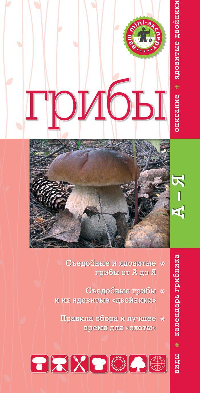 Грибы. Михаил Вишневский