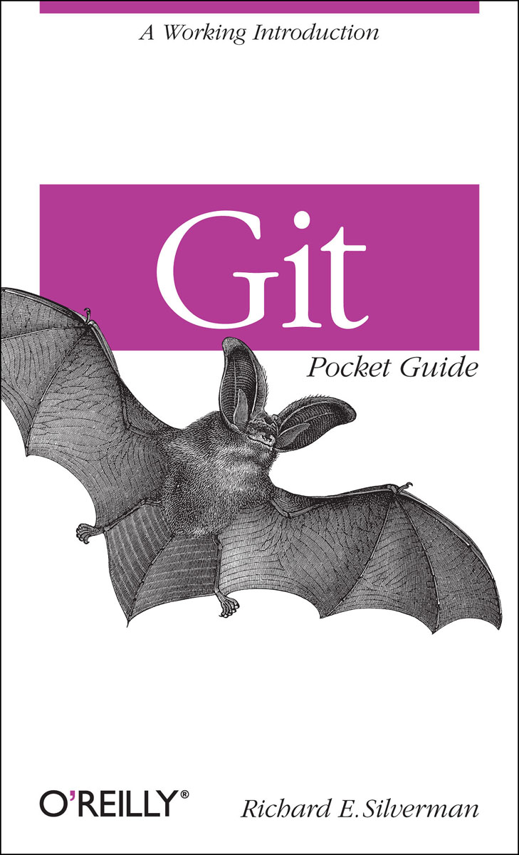 Git Pocket Guide insight pocket guide dubrovnik