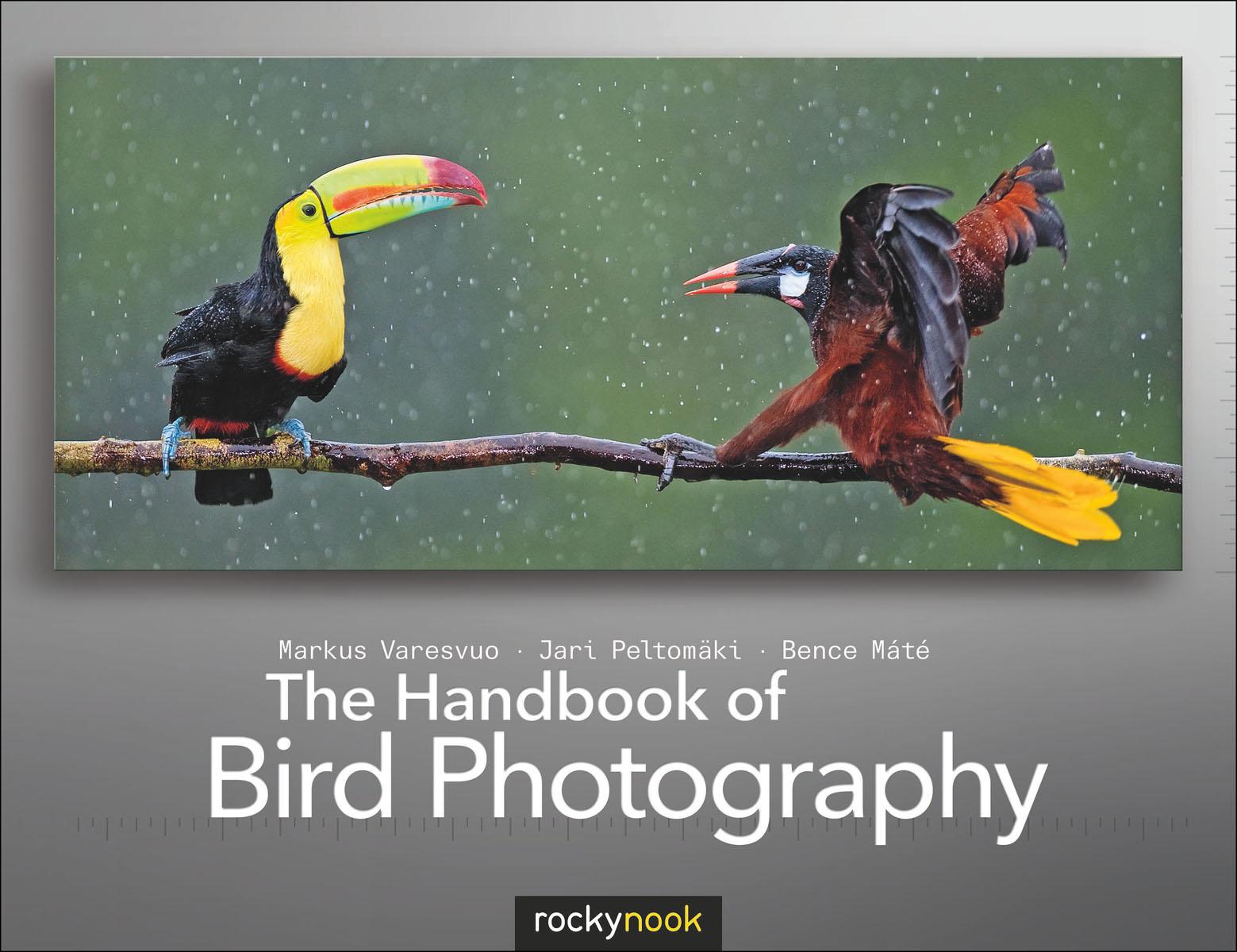 Handbook of Bird Photography, The boardsource the handbook of nonprofit governance