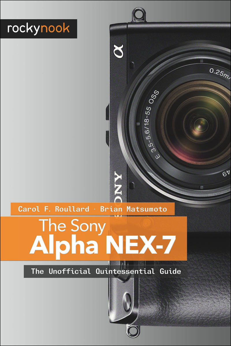 Sony Alpha NEX-7, The free shipping new nex 7 camera repair and replacement parts nex7 motherboard for sony nex 7 mainboard nex 7 main board