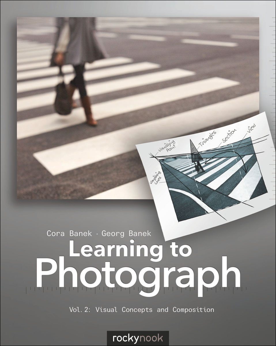 Zakazat.ru: Learning to Photograph - Volume 2
