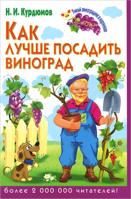 Н. И. Курдюмов Как лучше посадить виноград