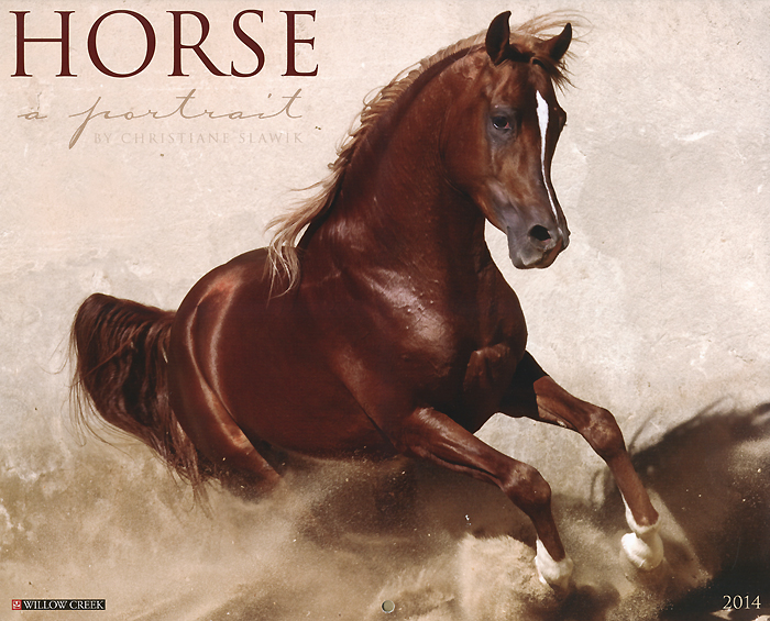 Horse: A Portrait 2014 Wall Calendar fairy & horse wall decal