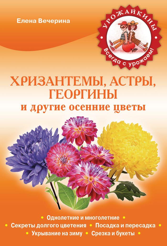 Елена Вечерина Хризантемы, астры, георгины и другие осенние цветы декоративные многолетние кустарники в украине