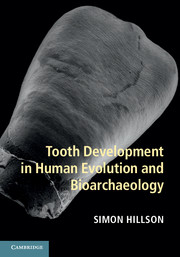 Tooth Development in Human Evolution and Bioarchaeology evolution development within big history evolutionary and world system paradigms